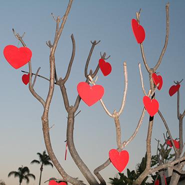 Какие бывают подарки на День святого Валентина